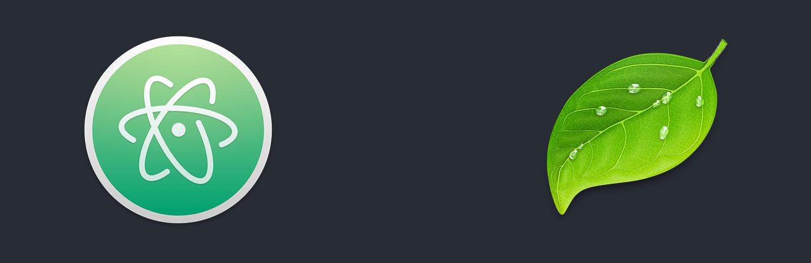 Atom versus Coda text editor